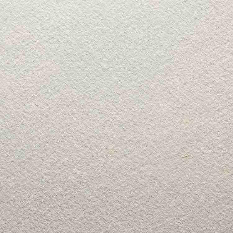 Modigliani Avorio