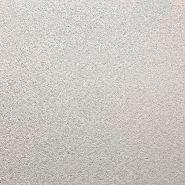Modigliani Bianca